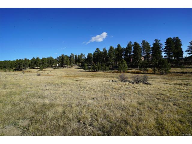 218 Cr 43 A, Bailey, CO 80421 (MLS #8544411) :: 8z Real Estate