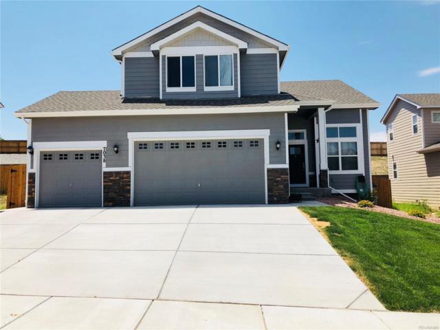7038 Dutch Loop, Colorado Springs, CO 80925 (#8544877) :: Bring Home Denver
