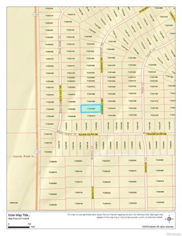 Somerset Road, San Luis, CO 81152 (#8545758) :: Bring Home Denver