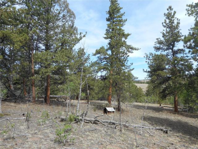 751 Aspen Circle, Hartsel, CO 80449 (#8550882) :: Wisdom Real Estate