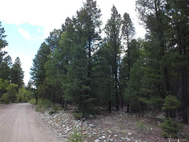 201/203 Big Bear Road, Mosca, CO 81146 (#8552128) :: Compass Colorado Realty
