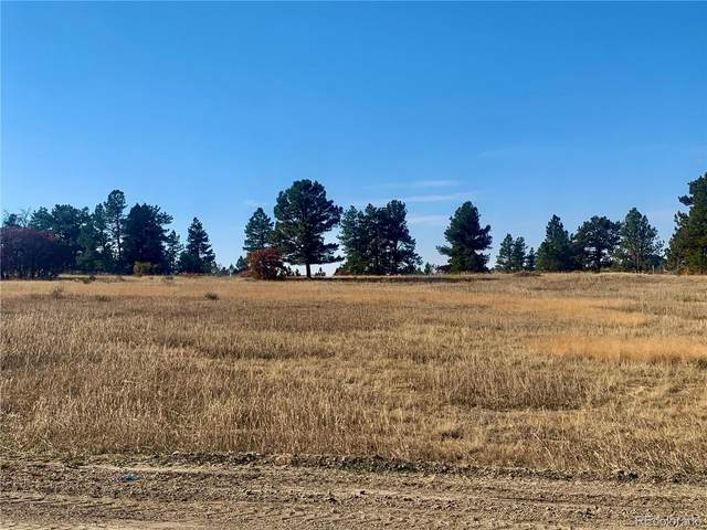 73 Evening Hunt Road, Franktown, CO 80116 (#8553741) :: Real Estate Professionals