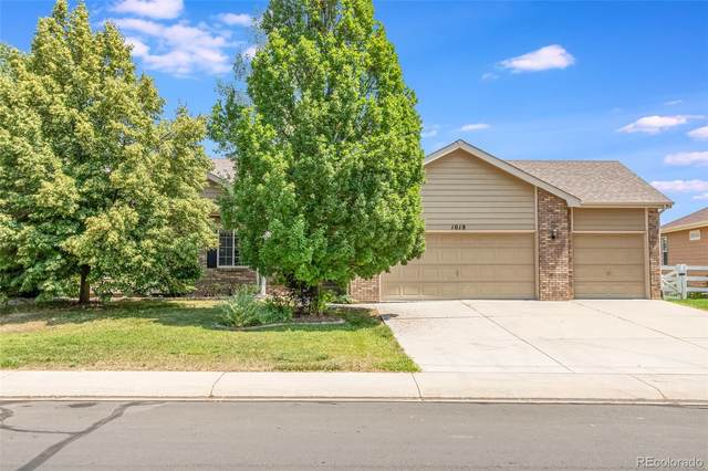 1018 Battsford Circle, Fort Collins, CO 80525 (#8557232) :: Berkshire Hathaway HomeServices Innovative Real Estate