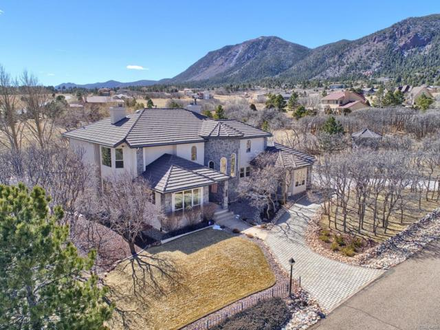765 Forest View Circle, Monument, CO 80132 (#8557357) :: Wisdom Real Estate