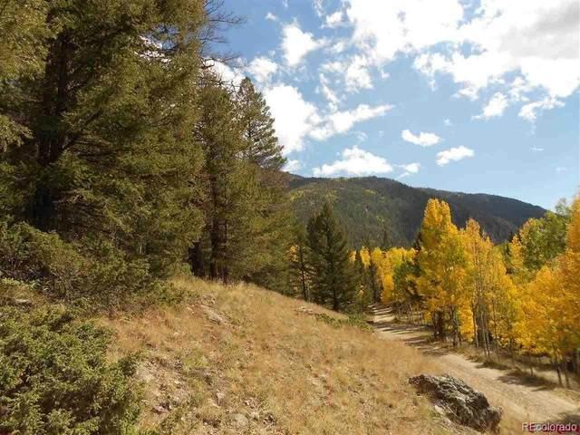 Tbd Judd Street, Jasper, CO 81144 (#8561524) :: The Colorado Foothills Team | Berkshire Hathaway Elevated Living Real Estate