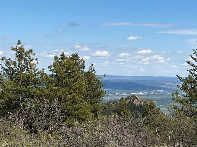 14860 Elk Mountain Trail, Littleton, CO 80127 (MLS #8562541) :: Wheelhouse Realty