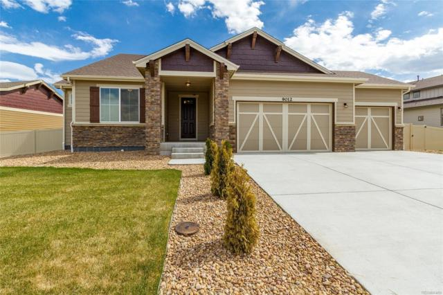 9012 18th Street, Greeley, CO 80634 (#8564823) :: My Home Team