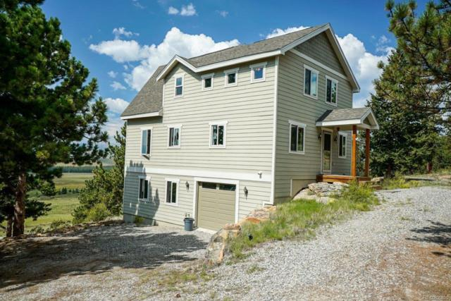1251 Bonell Drive, Fairplay, CO 80440 (#8566728) :: The Peak Properties Group