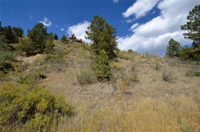 0000 Fall River Road, Idaho Springs, CO 80452 (#8566755) :: James Crocker Team