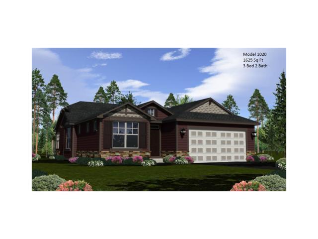 11541 Colony Loop, Parker, CO 80138 (MLS #8567330) :: 8z Real Estate