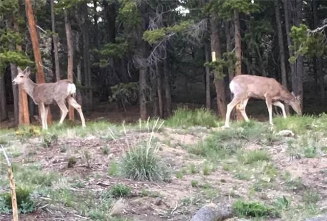 Philidelphia Silver Star, Idaho Springs, CO 80452 (#8569513) :: Bring Home Denver with Keller Williams Downtown Realty LLC