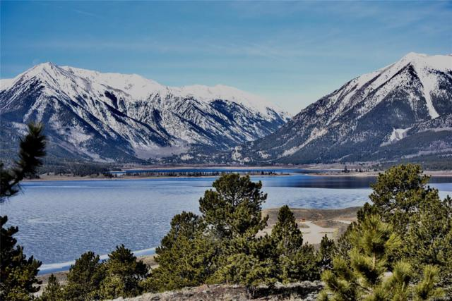 Tbd County Road 10, Twin Lakes, CO 81251 (#8569818) :: 5281 Exclusive Homes Realty