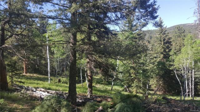 13667 Fir Drive, Conifer, CO 80433 (#8570119) :: Compass Colorado Realty