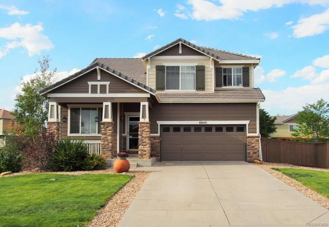 6643 Shannock Avenue, Castle Rock, CO 80104 (#8573543) :: The City and Mountains Group