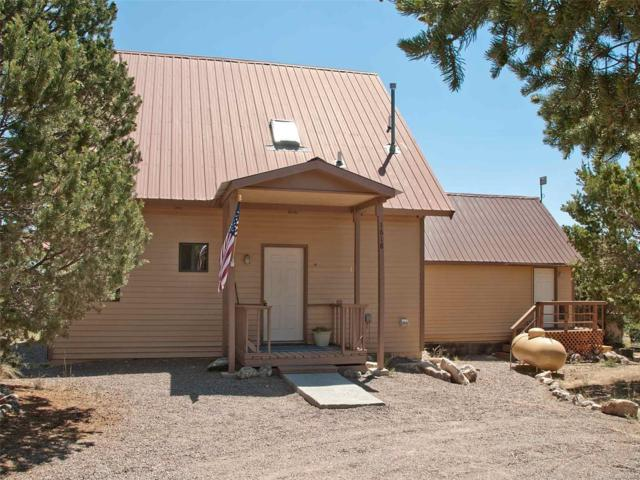 1618 Willow Creek Way, Crestone, CO 81131 (#8577142) :: The Dixon Group