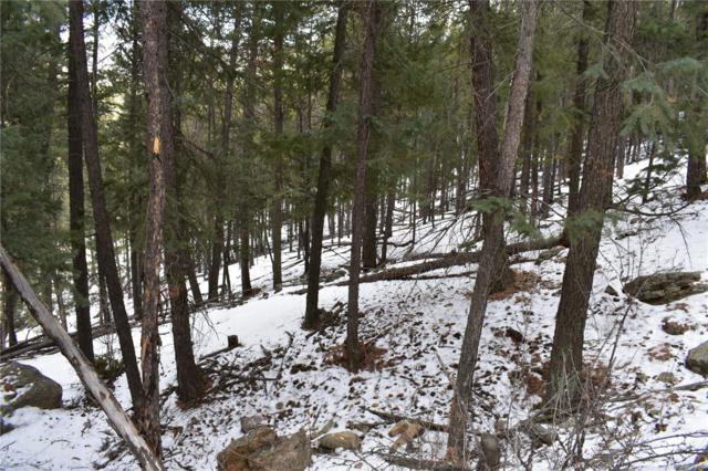 0 Clear Creek Road, Evergreen, CO 80439 (#8581238) :: The HomeSmiths Team - Keller Williams