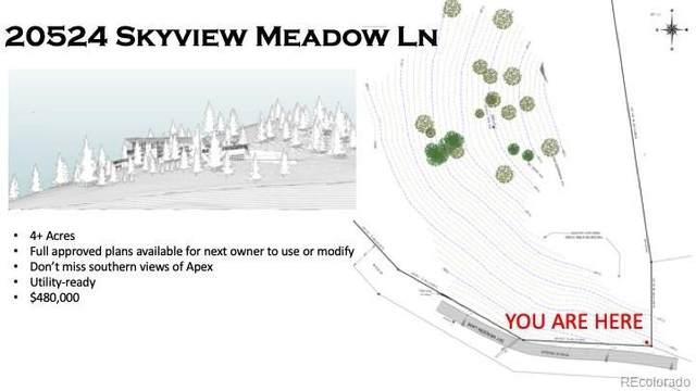 20524 Skyview Meadow Lane, Golden, CO 80401 (#8583284) :: The Gilbert Group