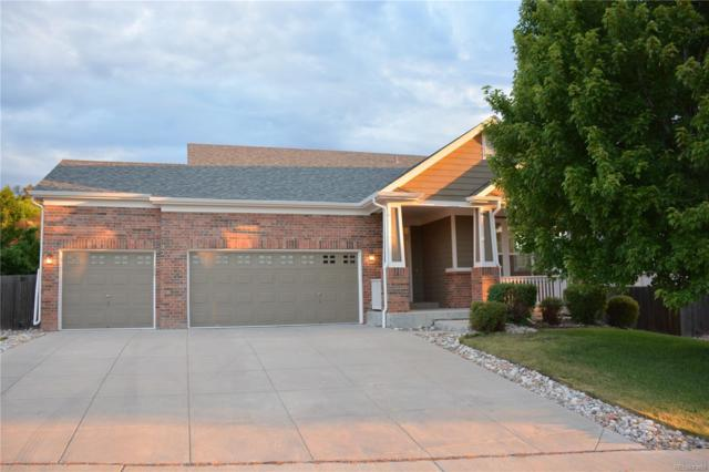 1774 Overton Drive, Castle Rock, CO 80109 (#8585845) :: The Griffith Home Team