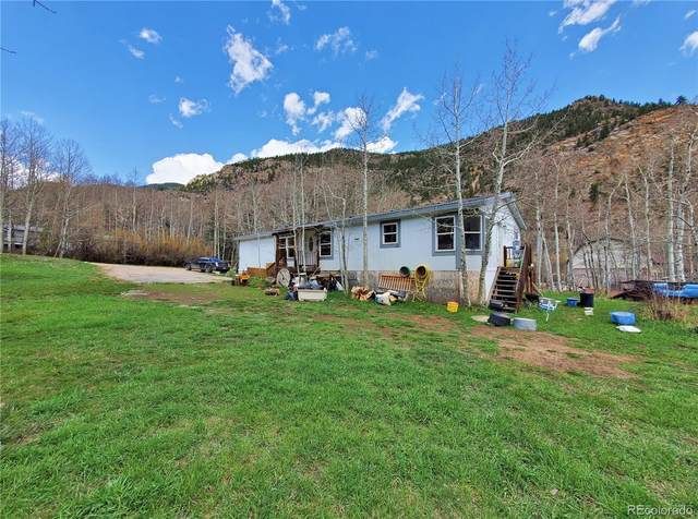 103 Capital Road, Dumont, CO 80436 (#8587307) :: The DeGrood Team