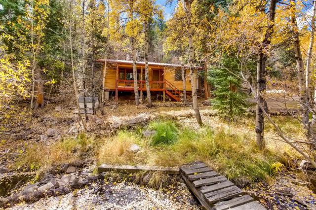 378 Road P-53, Bailey, CO 80421 (MLS #8590138) :: 8z Real Estate