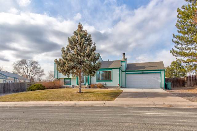 11116 Albion Court, Thornton, CO 80233 (#8591430) :: The DeGrood Team