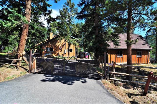 26491 Vosler Street, Conifer, CO 80433 (#8591790) :: The DeGrood Team