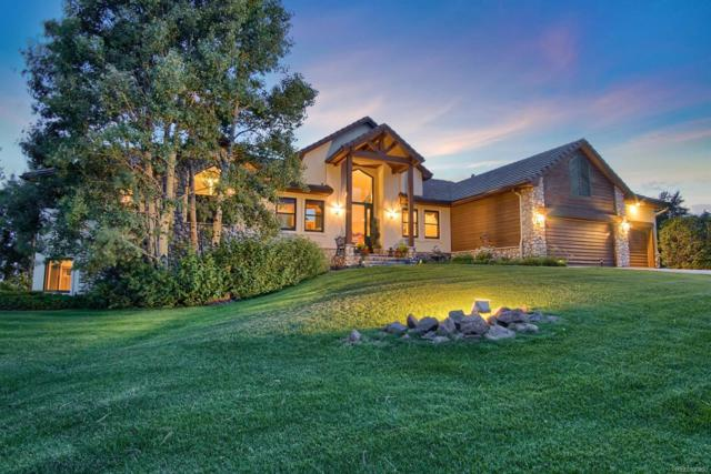 845 E Kings Deer Point, Monument, CO 80132 (#8592042) :: The Healey Group