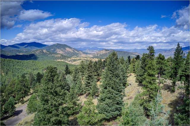 970 & 980 Soda Creek Road, Evergreen, CO 80439 (#8593565) :: HomePopper