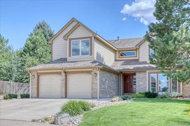 216 Corby Place, Castle Pines, CO 80108 (#8593777) :: Venterra Real Estate LLC