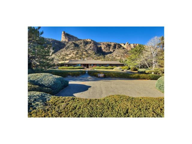 1999 Bison Court, Grand Junction, CO 81507 (#8595080) :: The Pete Cook Home Group