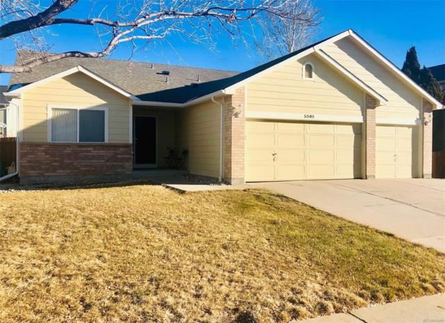 5505 E 117th Circle, Thornton, CO 80233 (#8595128) :: The City and Mountains Group
