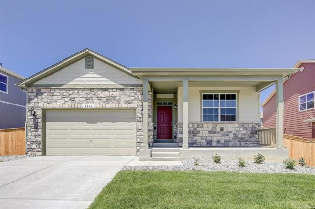 7907 E 139th Place, Thornton, CO 80602 (#8598665) :: Bring Home Denver