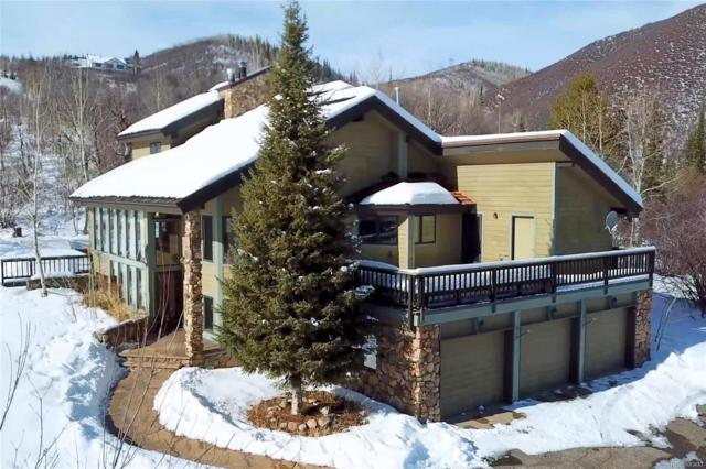 31635 Aspen Ridge Road, Steamboat Springs, CO 80487 (#8598911) :: The Pete Cook Home Group