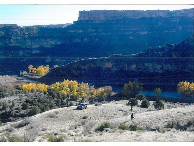 Debeque Canyon, De Beque, CO 81630 (MLS #8599767) :: 8z Real Estate
