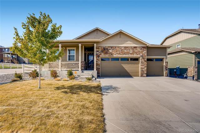 5931 Point Rider Circle, Castle Rock, CO 80104 (#8600231) :: The FI Team