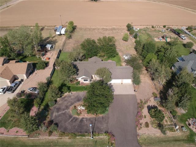 13221 Abilene Street, Brighton, CO 80601 (#8602571) :: Wisdom Real Estate