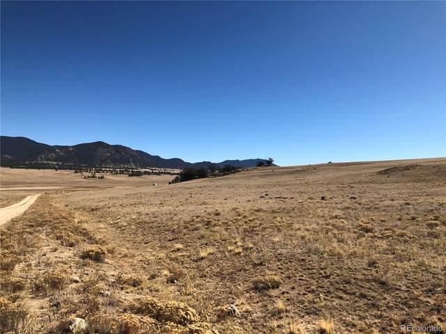 2696 Goldenburg Canyon Road, Hartsel, CO 80449 (#8606387) :: Hudson Stonegate Team