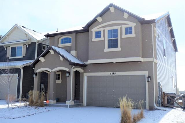 8285 Longleaf Lane, Colorado Springs, CO 80927 (MLS #8606971) :: 8z Real Estate