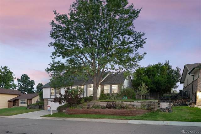 8994 W Cornell Place, Lakewood, CO 80227 (#8608159) :: Own-Sweethome Team