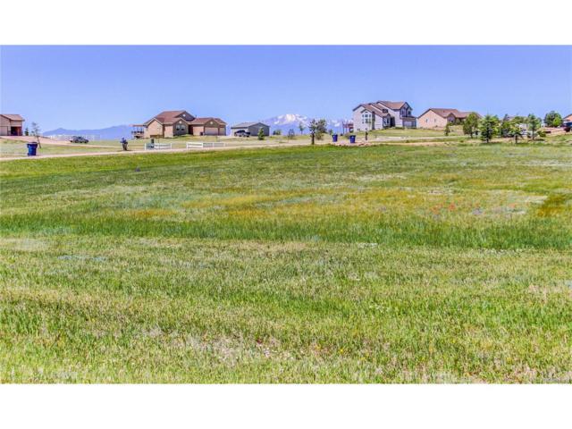 12225 N Conestoga Trail, Elbert, CO 80106 (MLS #8615178) :: 8z Real Estate