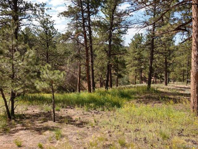 93 Wallace Drive, Florissant, CO 80816 (#8615812) :: The FI Team