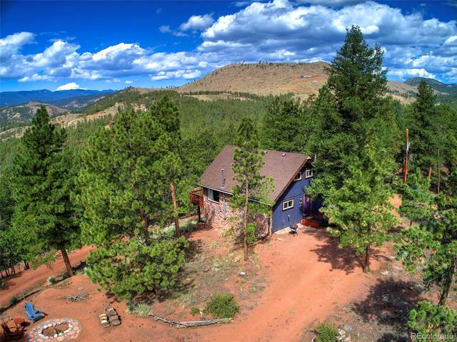 16510 Great Divide Trail, Pine, CO 80470 (#8618433) :: The DeGrood Team