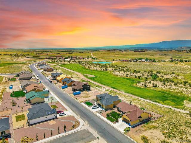 3564 Saddle Drive, Canon City, CO 81212 (MLS #8620283) :: Bliss Realty Group