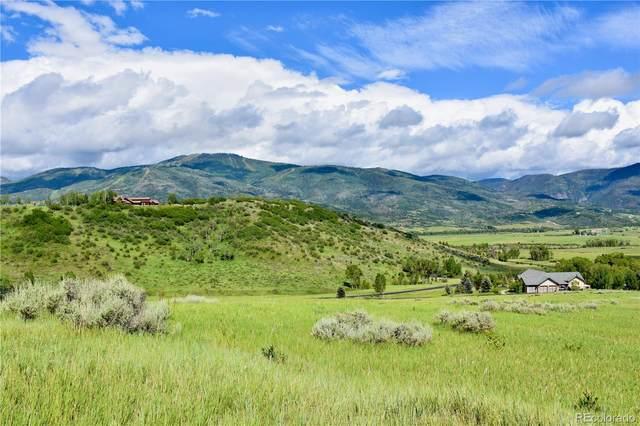 35960 Agate Creek Road, Steamboat Springs, CO 80487 (MLS #8621828) :: Bliss Realty Group