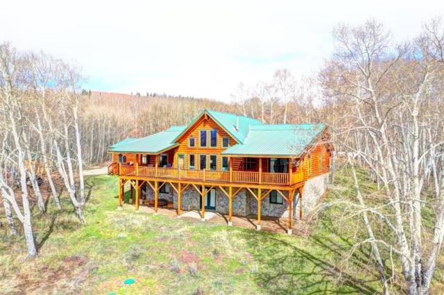 454 Mount Guyot, Jefferson, CO 80456 (#8622115) :: 5281 Exclusive Homes Realty