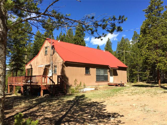 2699 County Road 17, Leadville, CO 80461 (MLS #8622470) :: 8z Real Estate