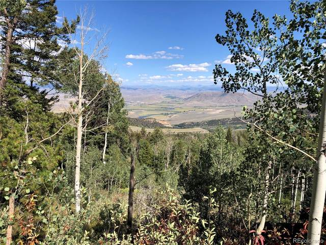 5167 County Road 14S, Kremmling, CO 80459 (#8629739) :: The DeGrood Team