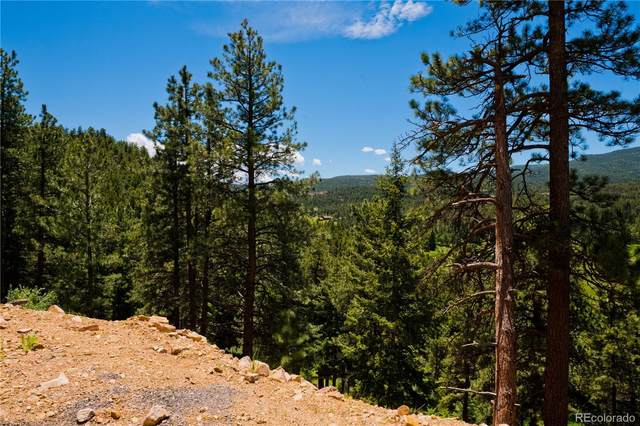 27292 Ridge Trail, Conifer, CO 80433 (MLS #8632331) :: Bliss Realty Group