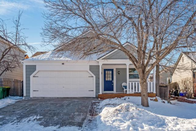 9784 Garwood Street, Littleton, CO 80125 (#8632690) :: The City and Mountains Group