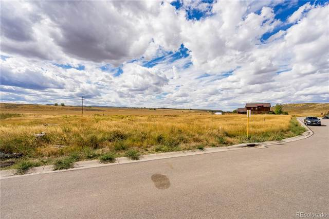 886 Dry Creek South Road, Hayden, CO 81639 (#8633160) :: The Brokerage Group